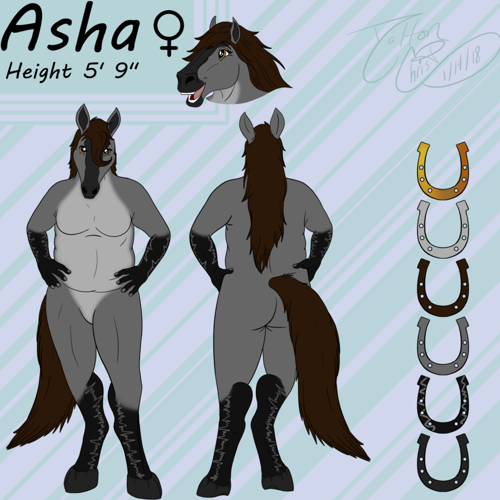 [Comm] Asha Ref Sheet