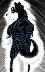 Sketchy Husky