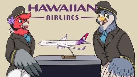 Hawaiin Pilots