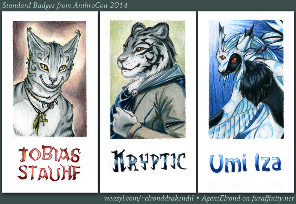 Standard Badges from AC 2014