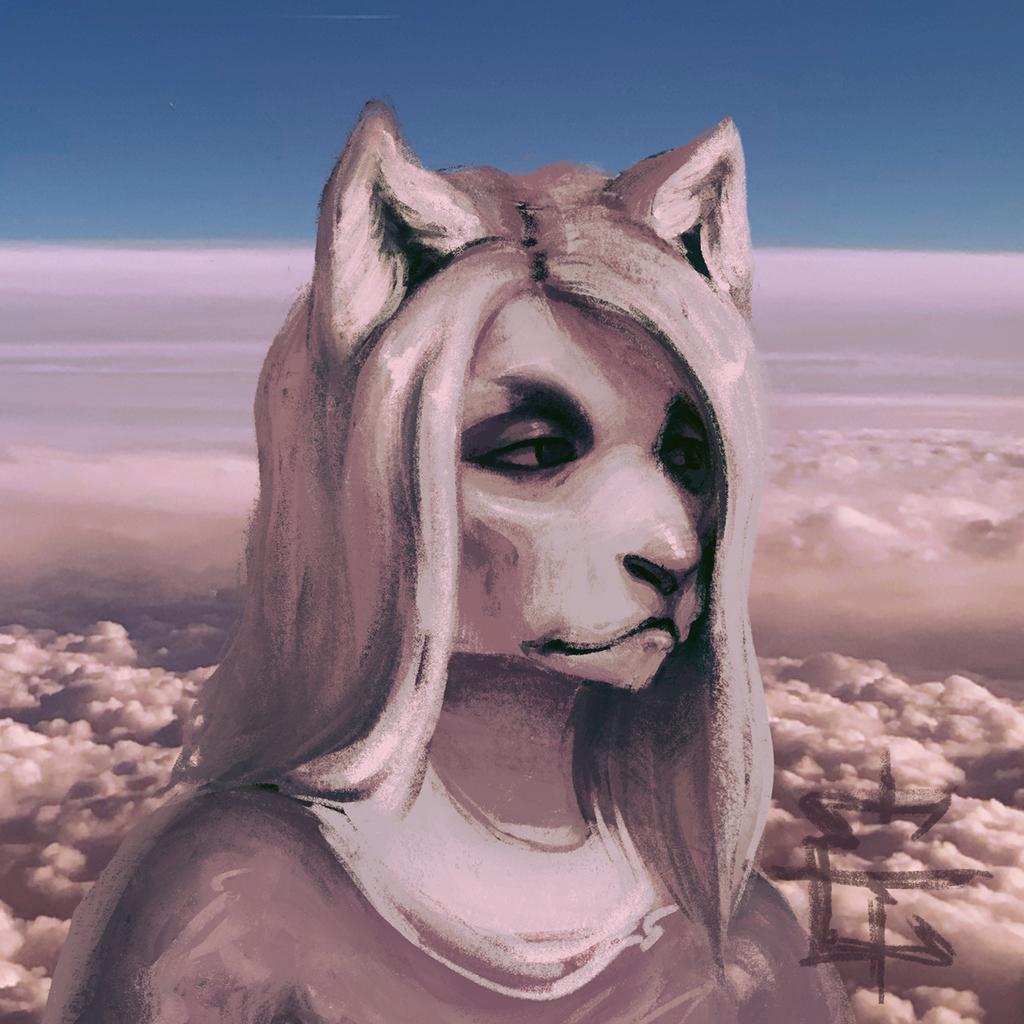 Most recent image: Random Feline Headshot