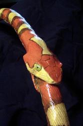Hoop Snake detail