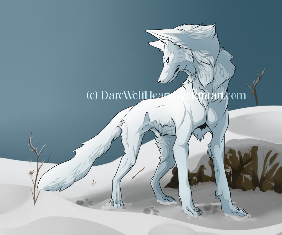 Most recent image: snowy