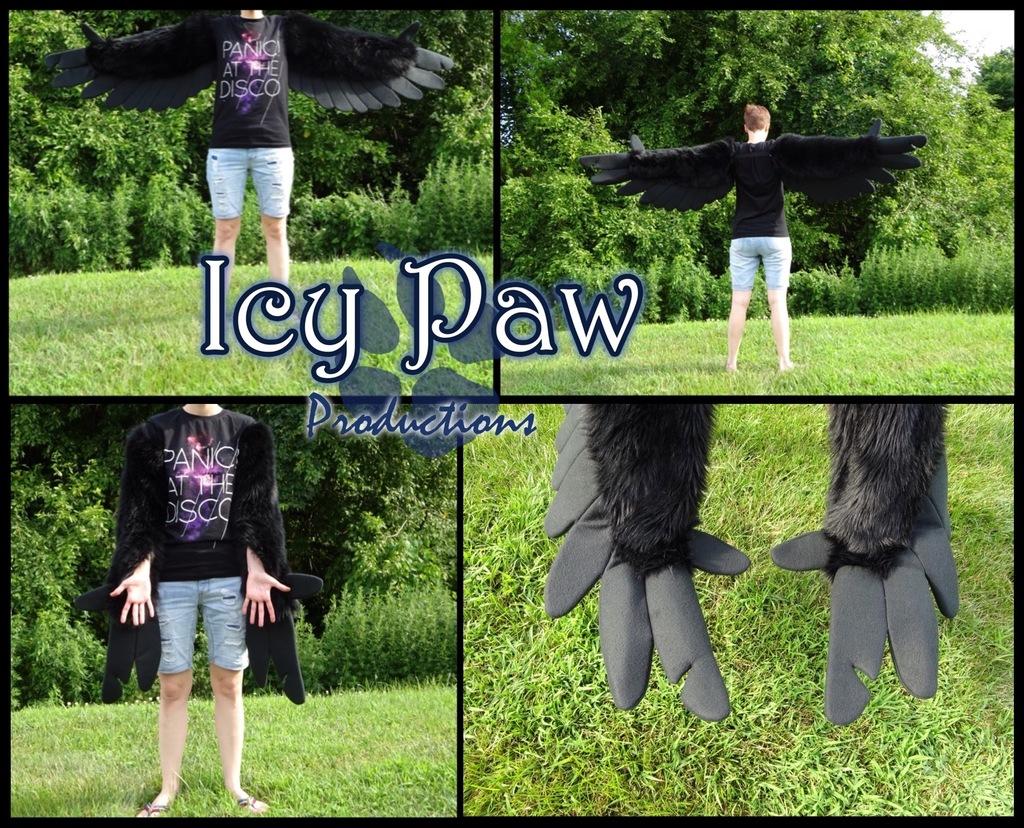 Black notch wings