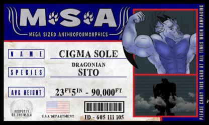 Cigma's M.S.A. ID Badge