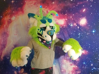Auction ends in 12HRS!