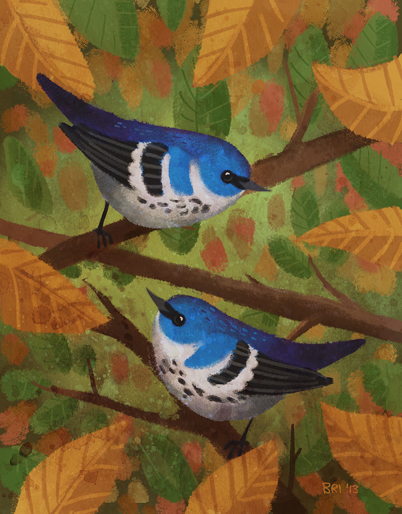 Cerulean Warblers - Losing Altitude submission