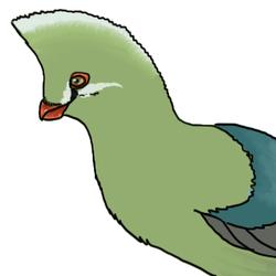 Decembird 3