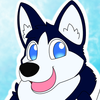 Avatar for KobbtheHusky
