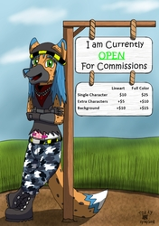 Currently OPEN for Commissions