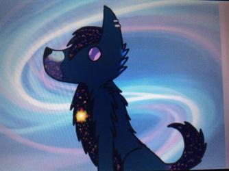 Rigel the star wolf