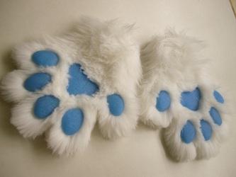 White wolf paws