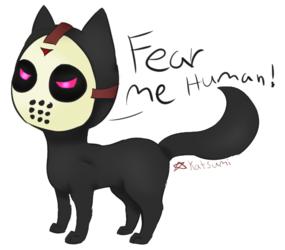 Jason Cat