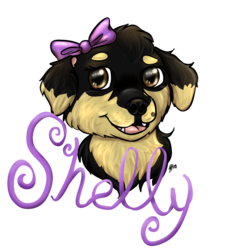 Badge for Shelly