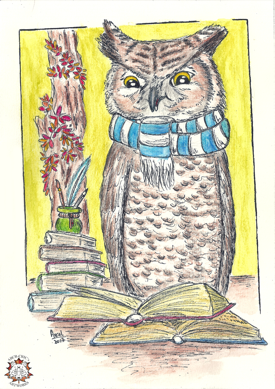 Featured image:  The Readin' Owly
