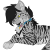 avatar of Greycait