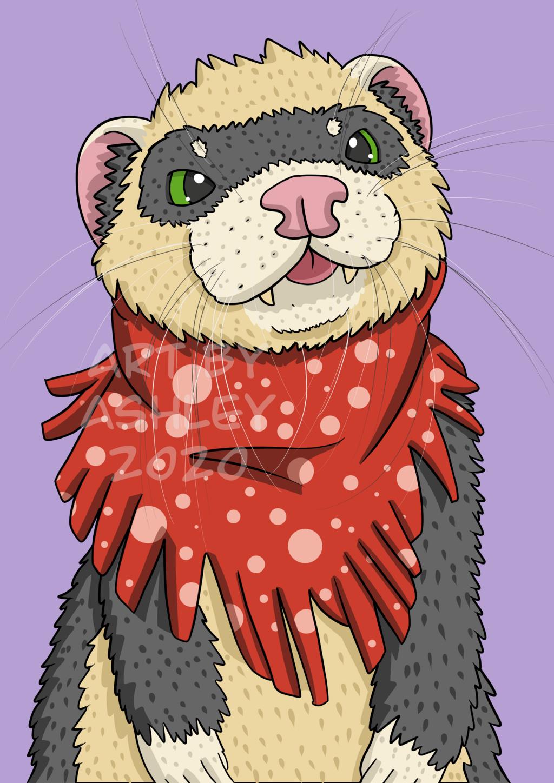 Meeko the Ferret