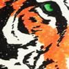avatar of insanefastone