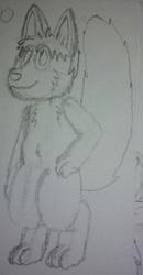 kris sketch