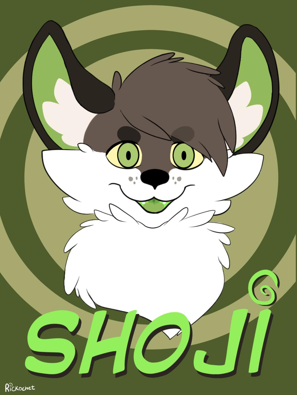 Most recent image: Shoji