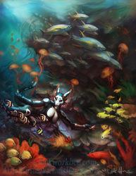 Dance of teh reef fish