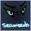 avatar of seaweeds