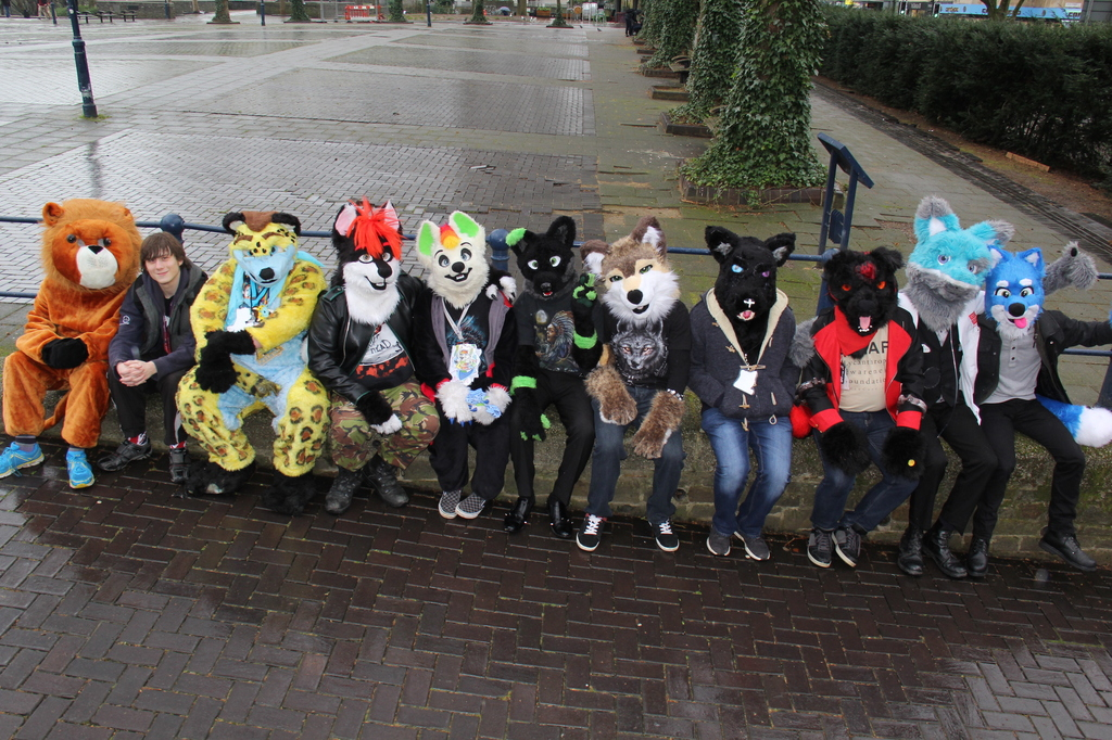 BristolFurs Meet February 2016 Group Shot