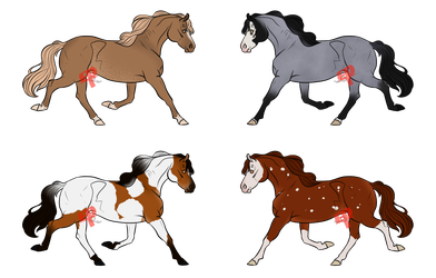 Horse Adopts