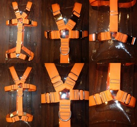 Furry Harness for Tiemera