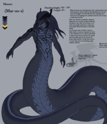 SFW Maurus V3 reference 2016