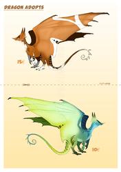Dragon Adopts 1# -OPEN-