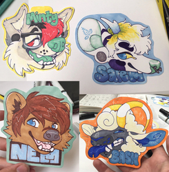 badges AC 2017