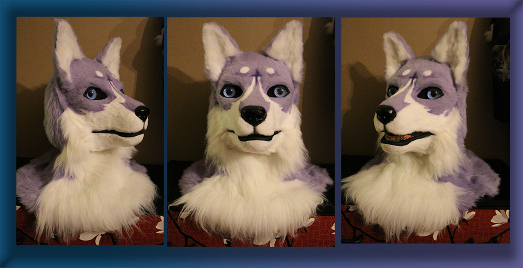 Most recent image: Huskey/wolf head  [C]