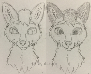 Fox Headshot Sketch