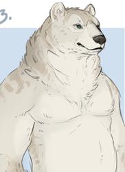 Bear Character Design Adoptables