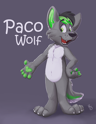 Paco Wolf