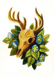 2020 03 02 Deer Skull and Flower