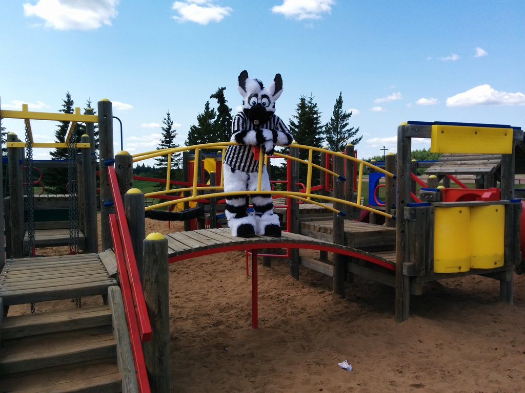 King of the playground!