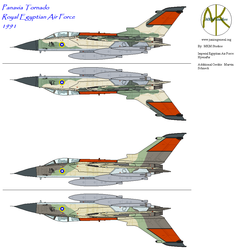 Egyptian Tornado, 1991, Part Deux