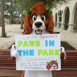 Donate to Paws in the Park!