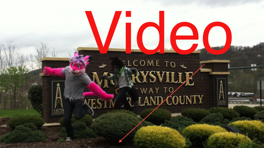 Most recent image: Murrysville Sign - Video!
