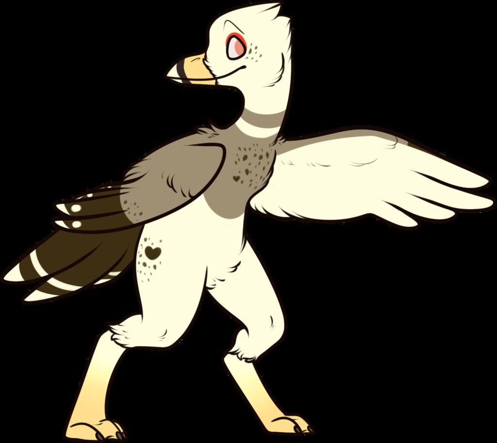 Elisheva the Ring-Billed Gull