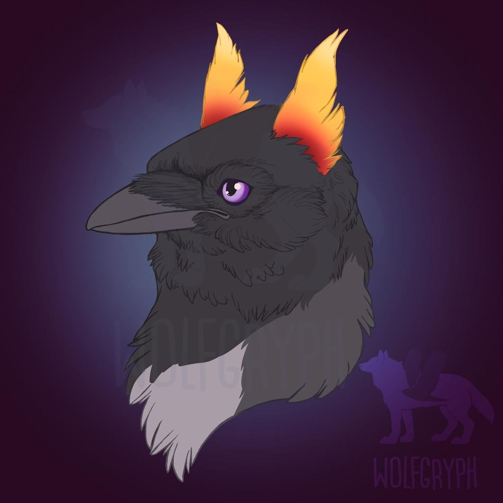 Portrait Dragony