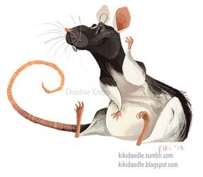Domino the rat