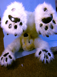 Polar Bear Paws