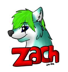 Zach Badge