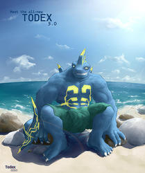Todex v3.0 (old version)