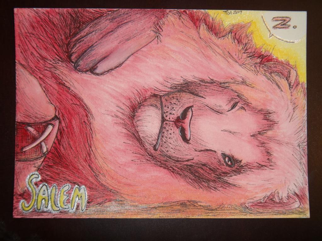 Raspberry Lion