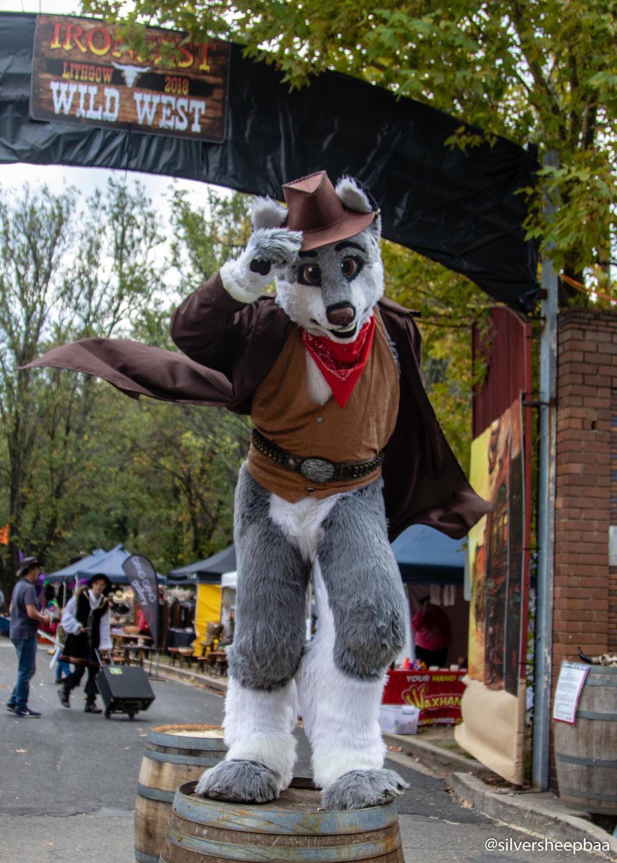 Ironfest 2018: Main Gate