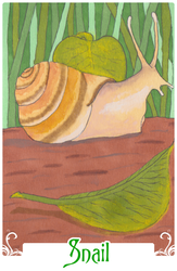 Snail (2014)